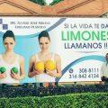 limones publicidad cirugías plásticas