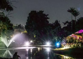 jardin botanico bogota noche nocturno viernes gratis