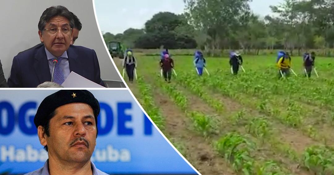 'Romaña' cultiva 30.000 hectáreas de maíz en el Meta: Fiscal