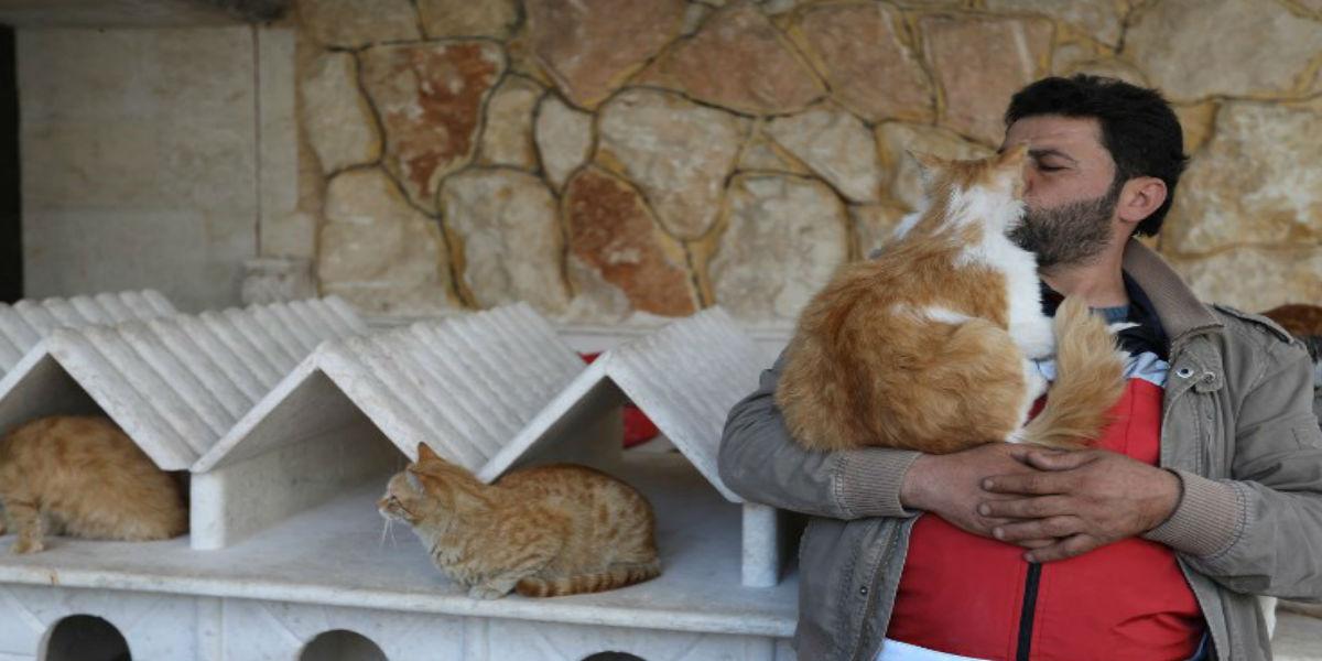 El refugio para gatos en una Siria golpeada por la guerra