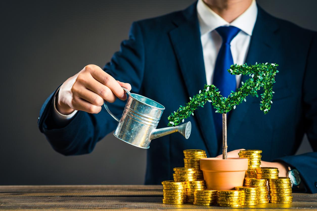 hacer crecer sus ahorros sector financiero rentabilidad