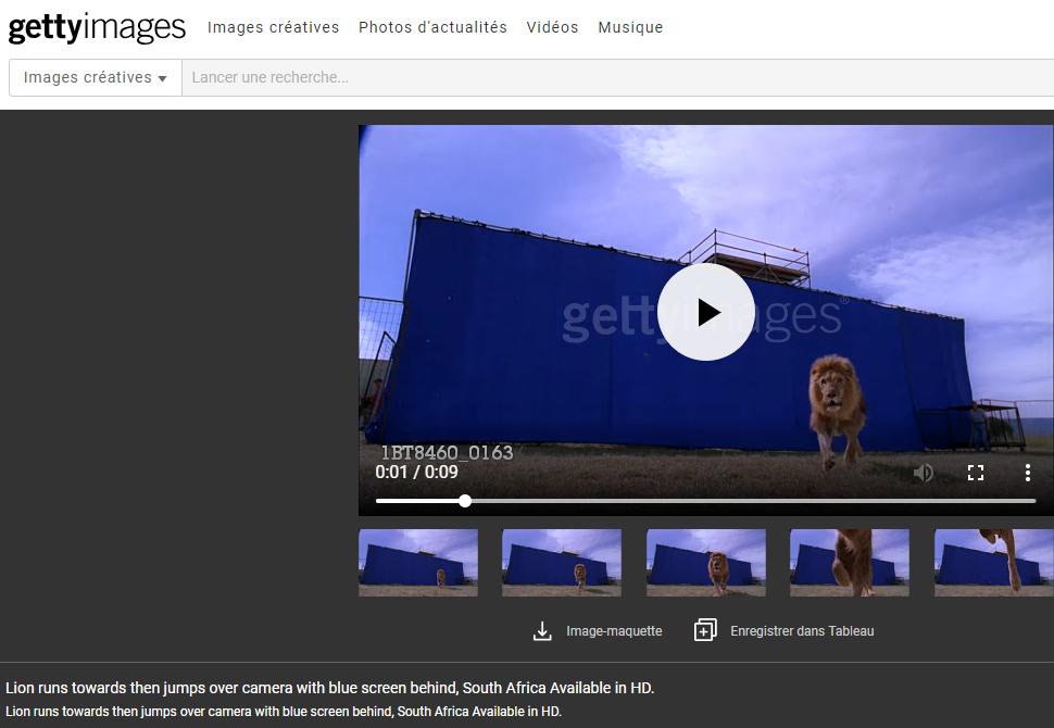 getty images leon captura