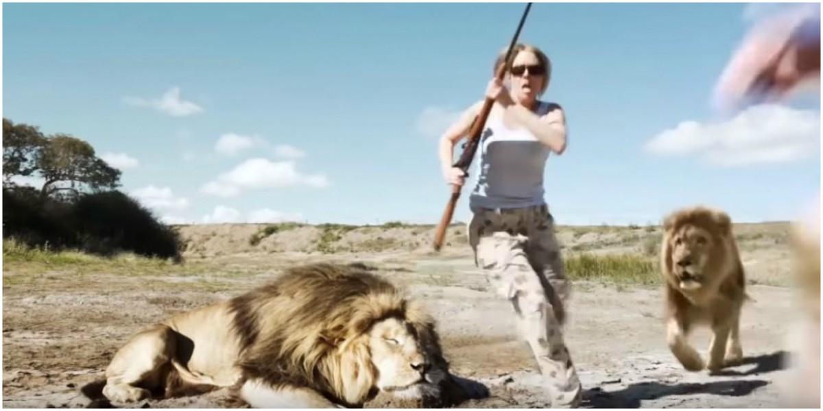verdadera historia leon se come cazadores video viral