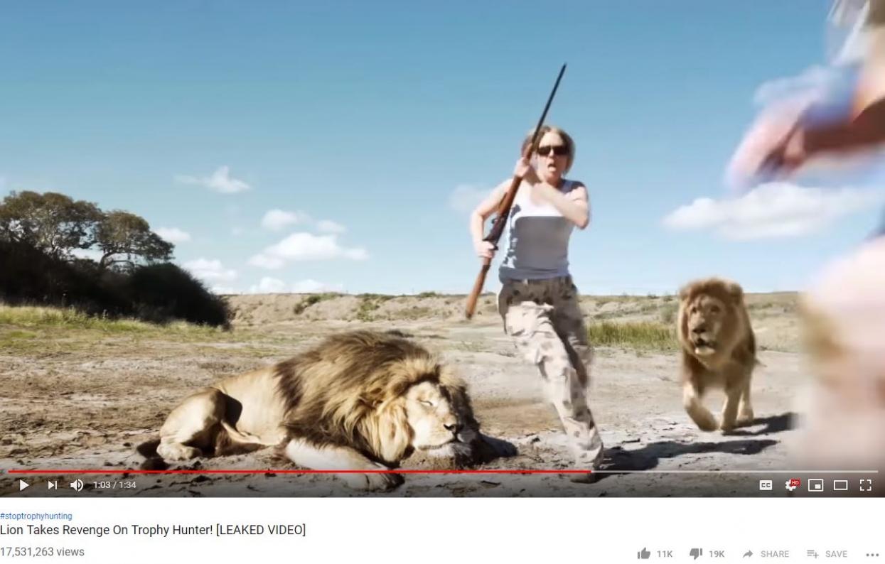 video viral leon se come cazadores youtube