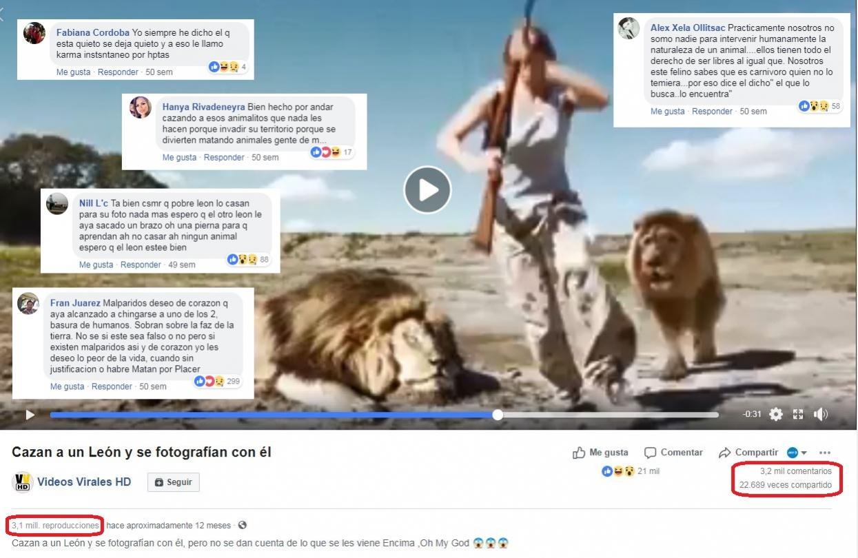 video viral leon se come cazadores