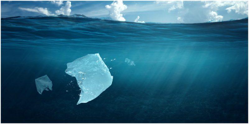 bolsas plasticas que se disuelven en el agua colombia