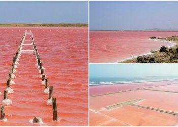 Galerazamba mar rosado caribe paraiso colombia