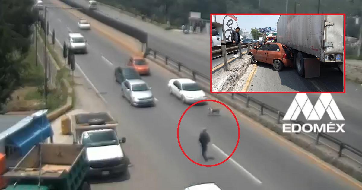 (Video) Hombre provocó gigante choque múltiple por ayudar a un perro en una autopista