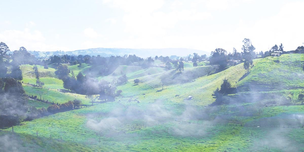 Alerta roja por heladas e incendios forestales en Antioquia