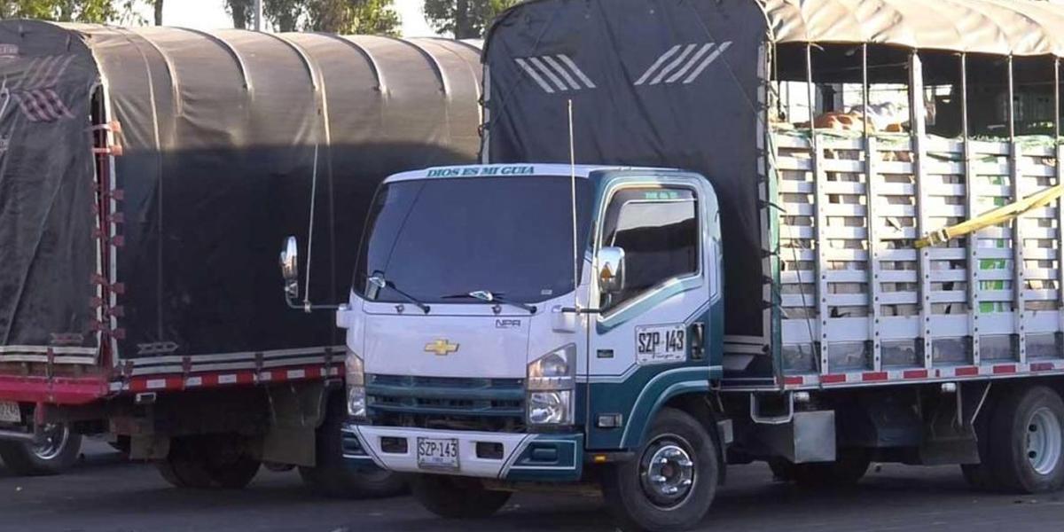 Boletín #7: Reactivan restricciones para los vehículos de carga desde este sábado