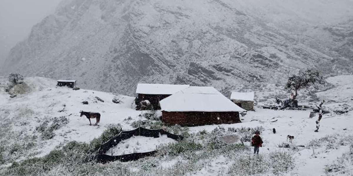 No es Alaska, es Boyacá: las imágenes del Parque El Cocuy por fuerte nevada
