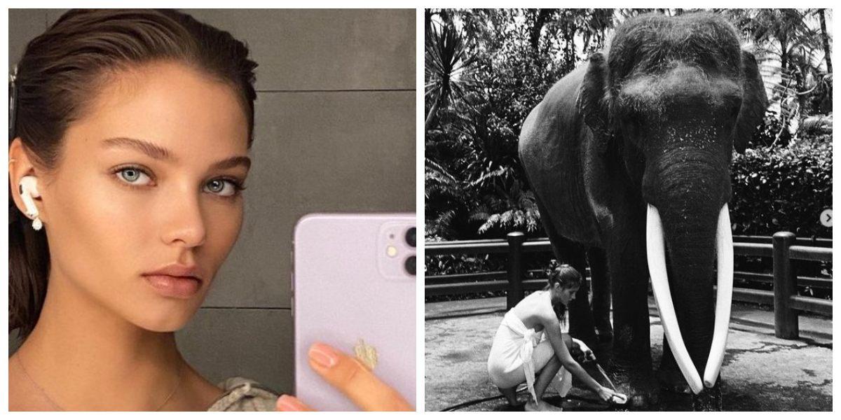 Críticas a influenciadora rusa por posar desnuda sobre un elefante