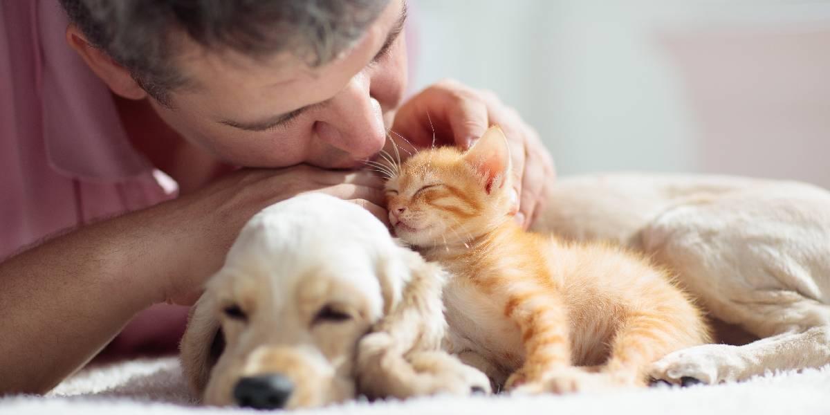 ¿Cómo escoger un plan de seguros para una mascota?