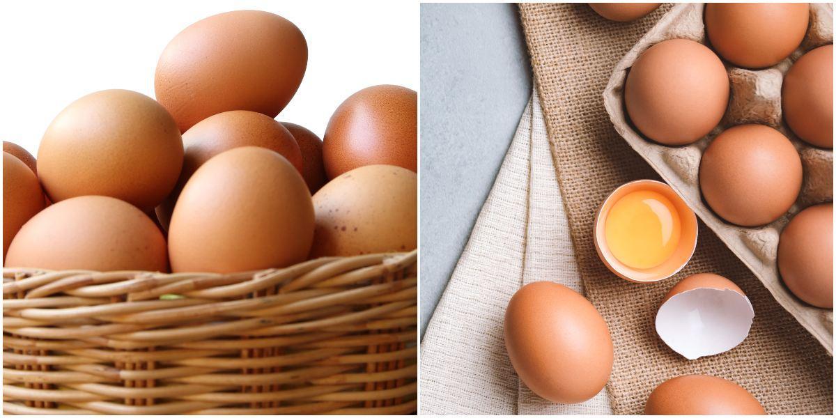 Cuál es el precio de los huevos en Colombia