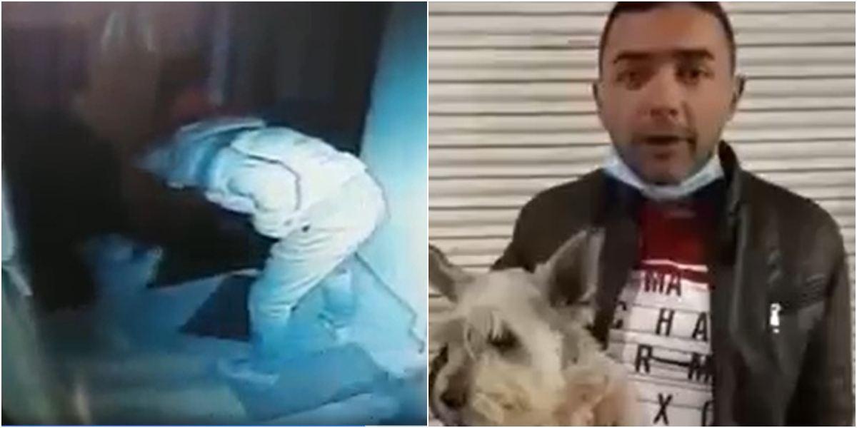 Hombre agresión patadas perro Pasto Nariño